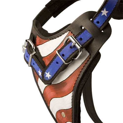 best designer custom leather dog harness