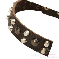Boxer Dog Collar Design Leather