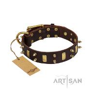 Braunes Halsband aus Leder