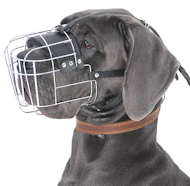 Wire Basket Muzzle for Great Dane | Extra Large Cage Dog Muzzle