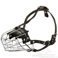Wire Basket Muzzle buy for Everyday Use and Trainings