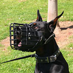 Wire Basket Dog Muzzle with Rubber Covering for Doberman