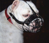 Wire Basket Dog Muzzle for Englisch Bulldog