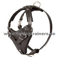 Leather Dog Harness for Schutzhund and Attack