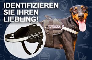 http://www.fordogtrainers.de/images/H6P-Doberman-mail.jpg