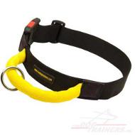 Nylon-Hundehalsband mit Griff fürs Training