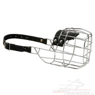 Bull Terrier Wire Cage Muzzle for Activities