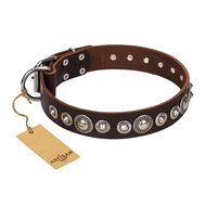 "Hundefreundliches Halsband Leder ""Step and Sparkle"" FDT Artisan"