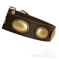 Retro Leather Dog Collar with Oval Plates