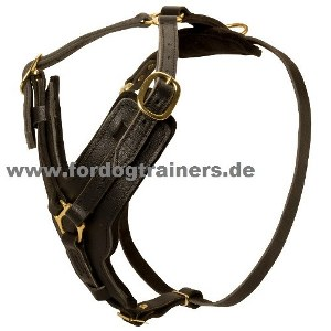 Padded Dog Harness for Schutzhund, Luxury Design