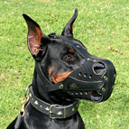 Dog Muzzle Leather for Doberman, K-9