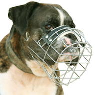 New wire dog muzzle perfect for BOXER