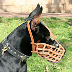 Leather Basket Dog Muzzle, Perfect for Working Doberman