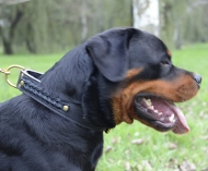 Braided Dog Collar Leather for Rottweiler, Handmade