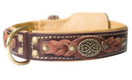 Exclusive Padded Leather Dog Collar
