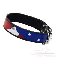 Leather Dog Collar in USA Style painted by hand