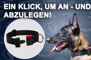 Hundehalsband aus Nylon mit Schnellverschluss