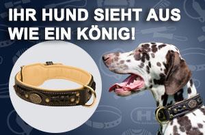 Geflochtenes Hundehalsband