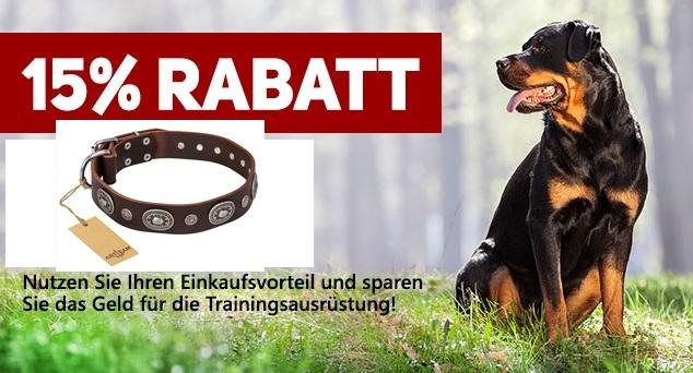 Sonderangebot Hundehalsband