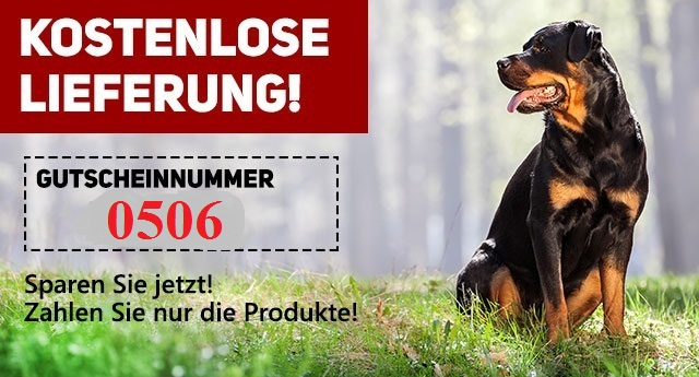 Zu Weihnachten gratis Lieferung auf Hundebedarfsartikel