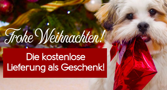 Kostenlose Lieferung der Hundebedarfsartikel zu Weihnachten 2018!!!