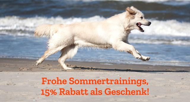 15 Rabatt für Hundespielzeuge