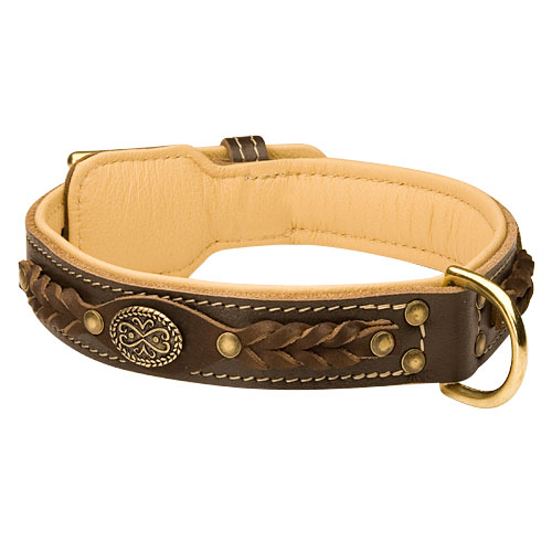Luxury leather dog collar, Brown