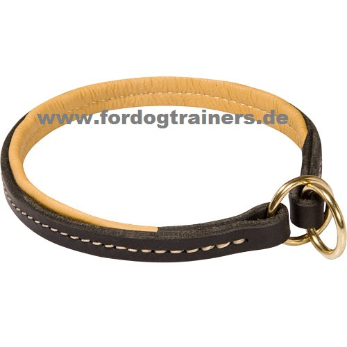 /images/dog-collars/Belgischer-Malinois-stillend-small.jpg