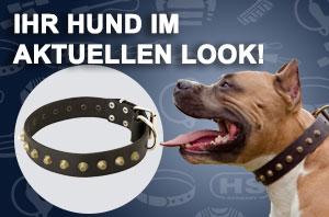 Hundehalsband Artisan