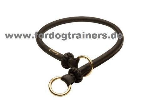 /images/dog-collars/Erziehungshalsband-Deutsche-Dogge-small.jpg