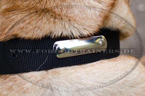 Hundehalsband aus Nylon mit ID-Platte aus Nickel