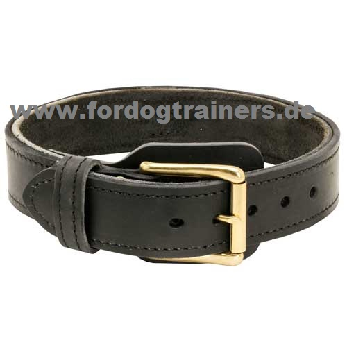 Leather collar with handgrip