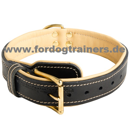 Royal Hundehalsband aus Leder mit Nappapolsterung