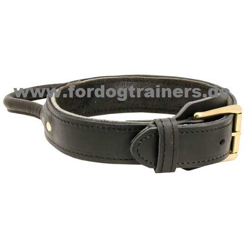 Strong leather collar
