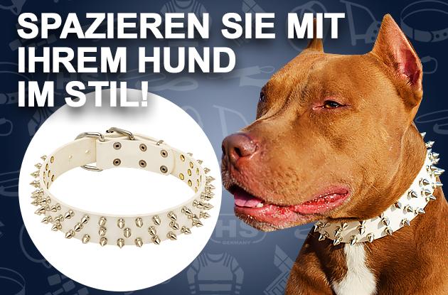 Hundehalsband aus Leder mit glänzendem Dekor