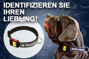 Hundehalband Nylon mit Schnellverschluss