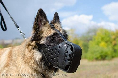 Geschlossener Lederbeißkorb für Hundetraining und Dienst