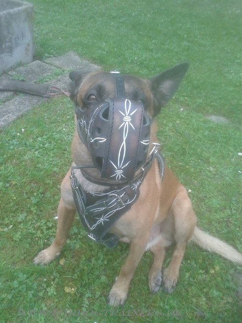 Painted leather dog muzzle buy