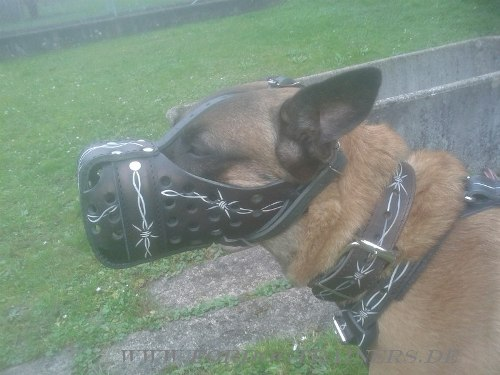 Padded Malinois leather dog muzzle
