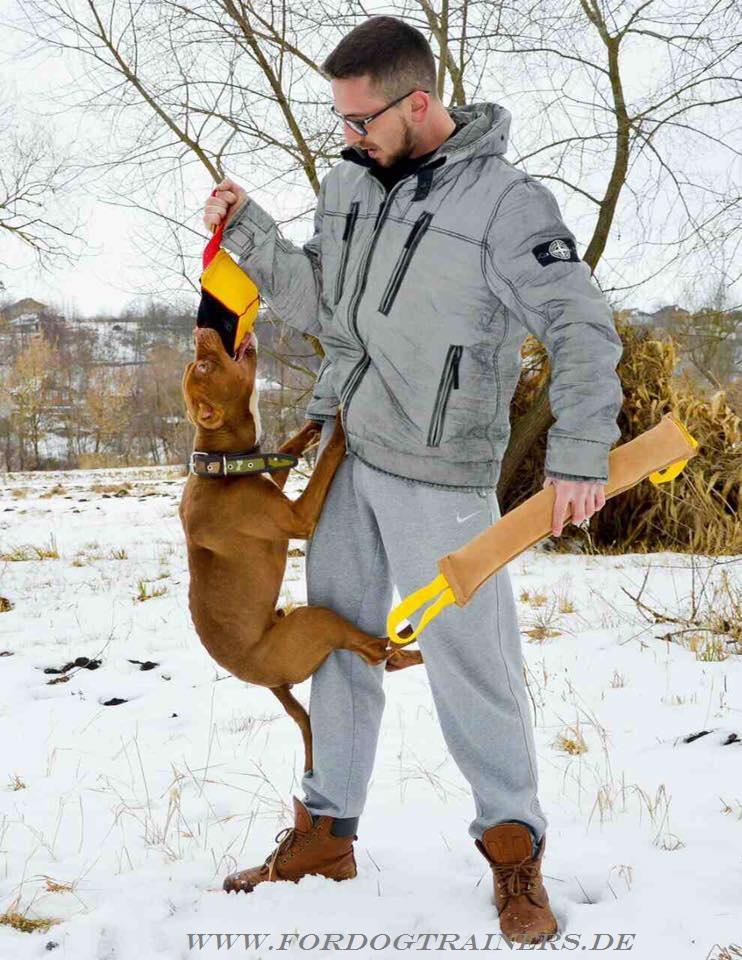 Weiches spielzeug für pitbull terrier