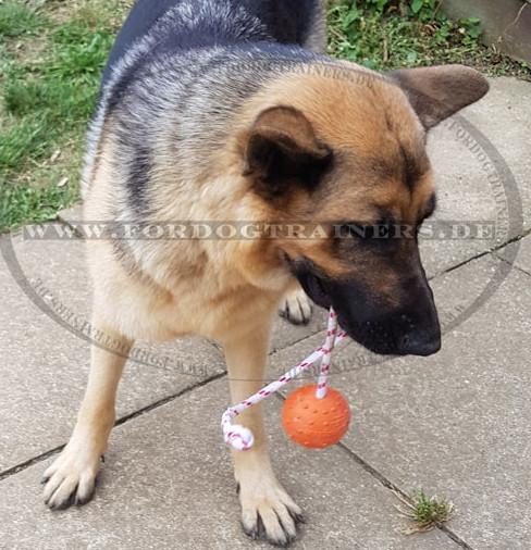 Sicheres Hundespielzeug Natural| Welpenspielzeug für Wasser