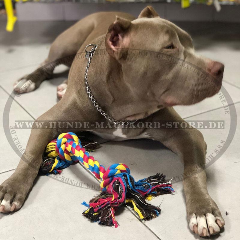 Knotenspielzeug für Hund Baumwolle Knochen groß