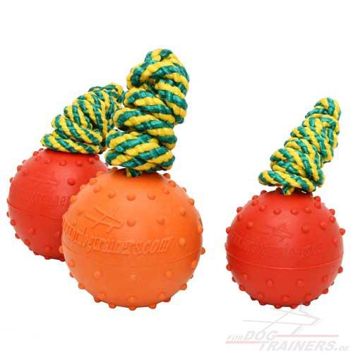 Bissfestes Hundeball-Spielzeug am Seill für Wassespiele