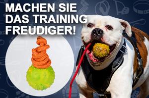 Hundespielzeug Ball aus Gummi, robust