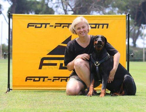 Hürde für Hundetraining