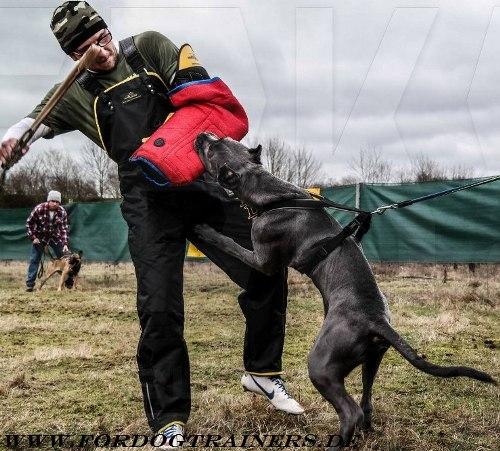 Hundetrainer Bekleidung Schutz Überanzug aus Nylon mit polsterung