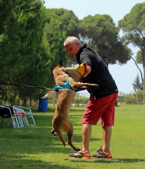 Jute Hetzarm für Hundesport