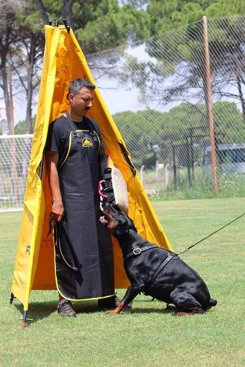 Dienstversteck für effektives Hundetraining