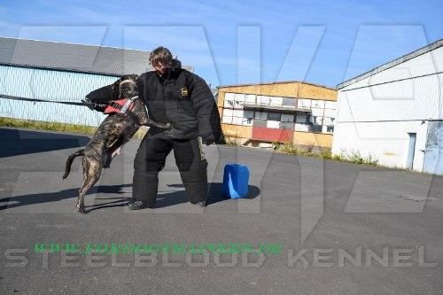 Vollschutzanzug fuer Schutzhundetraining kaufen