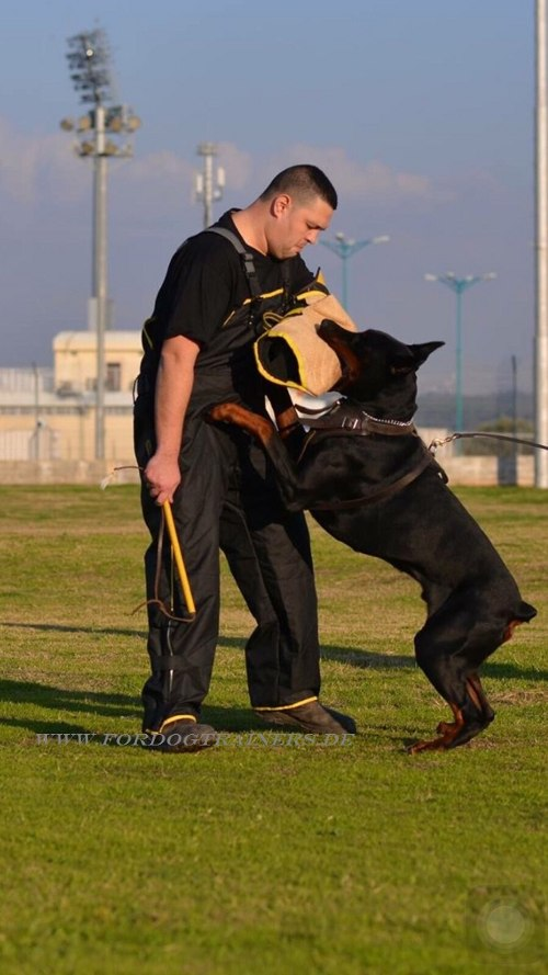 /images/dog-training-equipment/Wurfarm-aus-Jute-fuer-Trainings-small.jpg